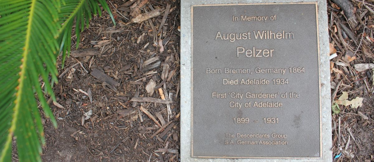 August Wilhelm Pelzer plaque on North Terrace