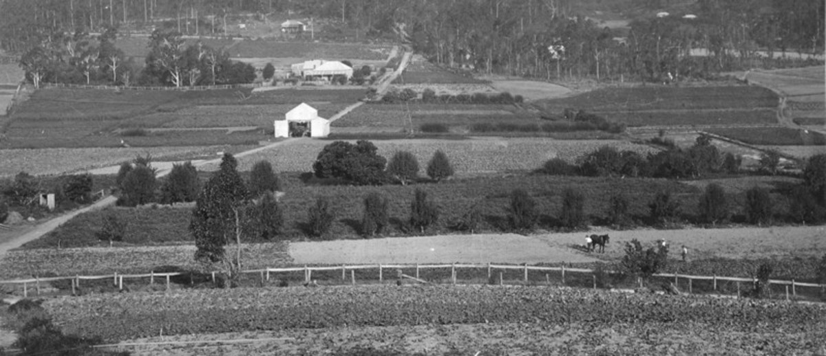 Image: view of farming properties