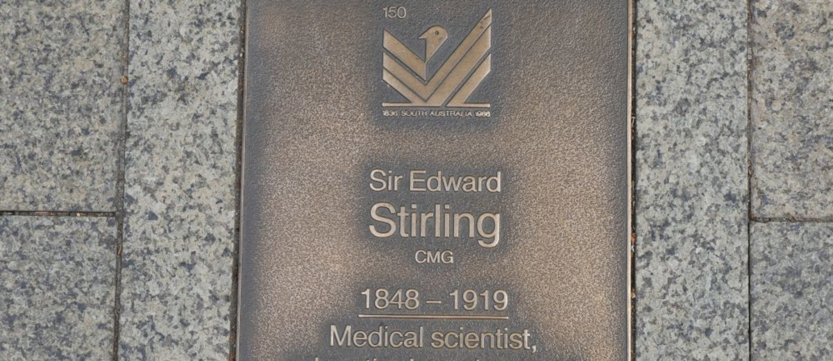 Image: Sir Edward Stirling Plaque