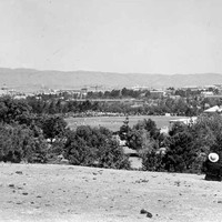 Image: five men sit on a low hill overlooking a cricket oval, with a match in progress, with a city behind.