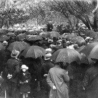 Image: Crowd of people with umbrellas gathered at anti-war public meeting