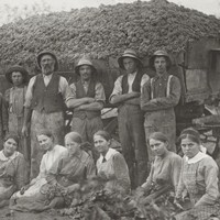 Image: Group of people in front of a large cart of harvested grapes