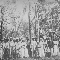 Image: First telegraph pole at Port Darwin