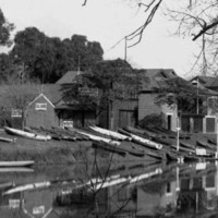 Image: Several wooden rowing boats of early twentieth century vintage line the bank of a placid river, A line of boathouses stand on the bank a short distance from the boats, and an arched bridge crosses the river in the background