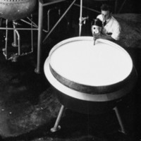 Image: A young Caucasian man in a white laboratory coat uses an industrial mixer to combine chemicals in a large steel vat. Large metal storage tanks are visible in the immediate background