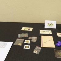 Image: Display featuring posy of violets, badges and postcards
