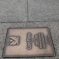 Image: bronze name plaques in pavement