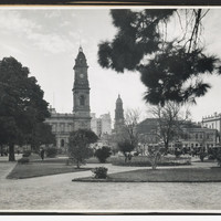 Image: view of trees with buildings in the background