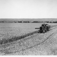 Image: tractor in field