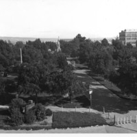 Image: View of trees and paths in city square