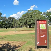 Image: a grassy park with a variety of species of trees. In the foreground is a  red and green sign with the name of the park (Rymill Park/Mullawirraburka), some other printed text which cannot be made out in this photograph, and a map.