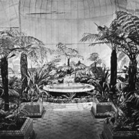 Image: Ferns and fountain in a glasshouse