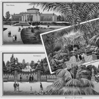 Image: Advertising print image of a glasshouse and pond in a botanic garden