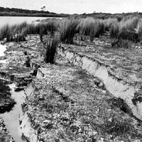 Image: Earthquake damage at Lake Battye