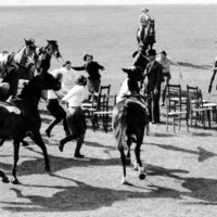 Image: Men and horses playing musical chairs