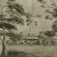 Image: photograph of a drawing showing the homestead at Bungaree Station