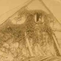 Image: A oval photograph of a single storey rectangular cottage with an attic space under the gable roof, a small window in the gable end in which a woman's face can be seen and a single chimney. The house is covered in vines.