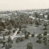 Image: Historic photograph of formal gardens surrounded by houses. The photograph has been taken from a high angle and looks westward from the North Adelaide Congregational Church.