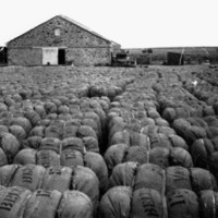 Image: wool bales in front of building