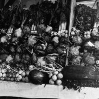 Image: large pile of assorted vegetables on long table