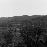 Trees in foreground, hills in background