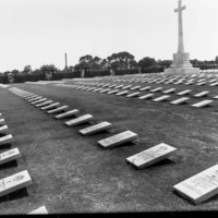 Image: Multiple lines of Australian soldiers gravestones fill a large section of the West Terrace Cemetery