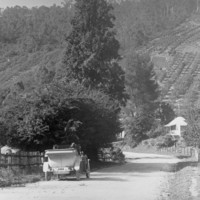 Image: Motor car in the Mount Lofty Ranges