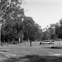 Image: Old tourist bus near gum trees