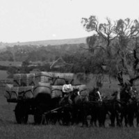 Image: horses pulling a cart of wool bales