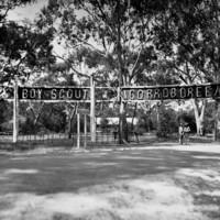 Boy Scout Corroboree sign between gum trees