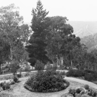 Image: A large garden featuring circular plant and flower arrangements, and winding paths