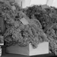 Image: display of wool