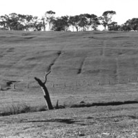 Image: hillside landscape with visible furrows