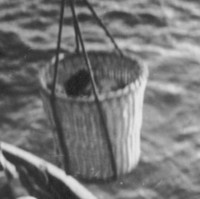 Image: A Caucasian woman is hoisted from a small boat to a jetty in a large wicker basket. The top of the woman's head and part of a wrapped bundle are just visible in the basket