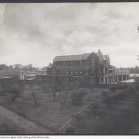 Image: Shows the State Herbarium from a distance, with a vacant block full of trees to the left of the Goodman building