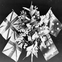 Image: A wattle plant, with two British flags, and two Australian flags flying behind