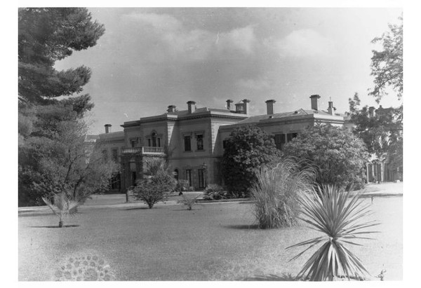 Image: A large two-storey house flanked by trees and a lawn containing other plants