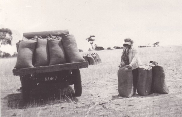 Image: woman standing with large hessian bags next to vehicle loaded with bags
