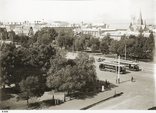 Image: view of trees and two trams