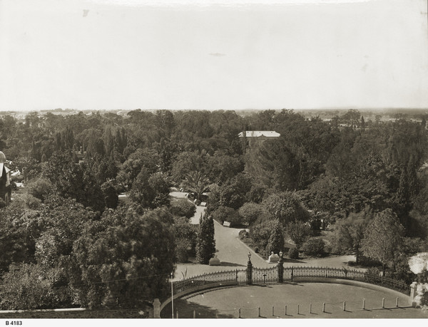 Image: View of a building in the distance, across trees of botanic garden