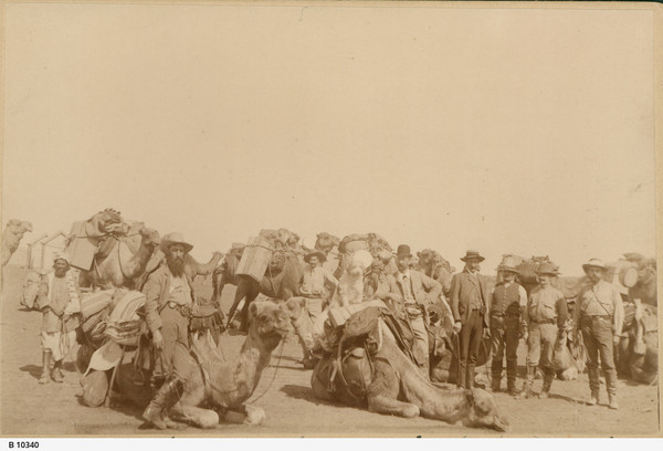 Image: ten camels, all with luggage and saddlebags tied to them with rope, and eight men preparing for an expedition