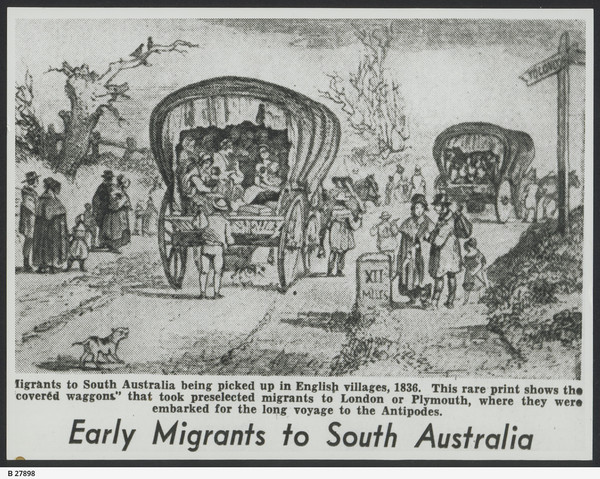 Image: Text on image reads: Migrants to South Australia being picked up in English villages, 1836. This rare print shows the 'covered waggons' that took preselected to London or Plymouth, where they were embarked for the long voyage to the Antipodes.