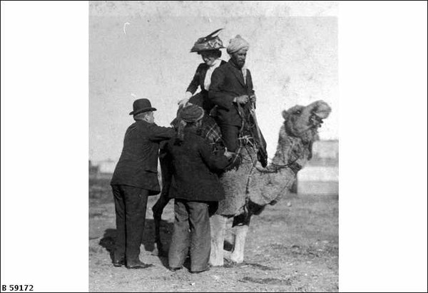 Image: An Afghan man and Australian woman sit on the back of a camel, while two men attempt to make the camel kneel