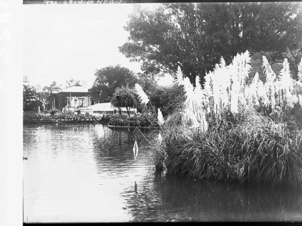 Image: A black and white photograph of a building seen from across an artificial lake with large clumps of water reeds in the foreground.