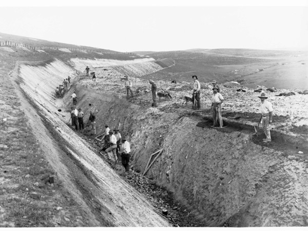Image: Men digging a deep trench through bare paddocks