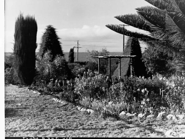 Image: A garden featuring several kinds of flowering plants and three topiary trees. A treeless field is visible in the background