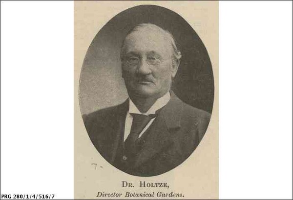 Image: An oval shaped black and white head-shot of a bespectacled, balding man in a dark suit and tie. Captioned DR. HOLTZE, Director Botanical Gardens.