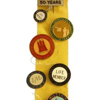 Image: Yellow ribbon covered in colourful badges