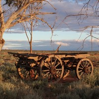 Image: wooden wagon in outback