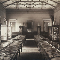 Image: Museum exhibition with wooden cabinets
